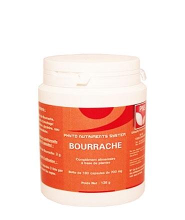 phytotherapie-bourrache